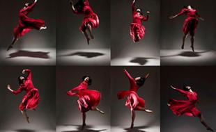 """BenQ Fotowettbewerb """"Motion in a still"""""""