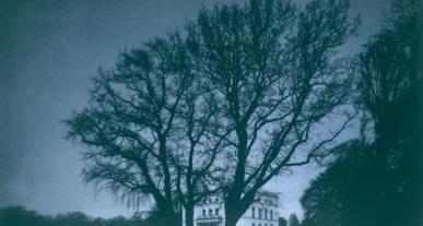 Schwarze, blattlose Äste eines Baumes vor einem dunkelblauen Himmel.