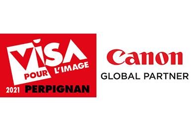 Logo Visa pour l'image