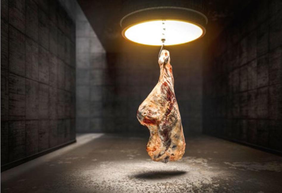 Eine Rinderhälfte hängt in einem Raum